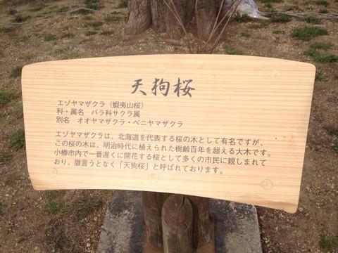 Otaru_20150503_154333