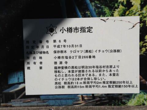 Otaru_20150825_145531
