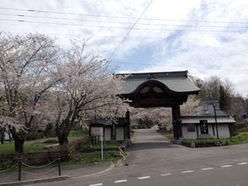 Otaru_20130521tenjyouji3