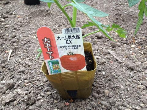 Blog20140530094634