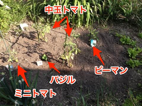 Blog20150529_15_59_25r