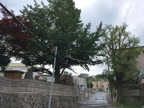Otaru_20170720_144802