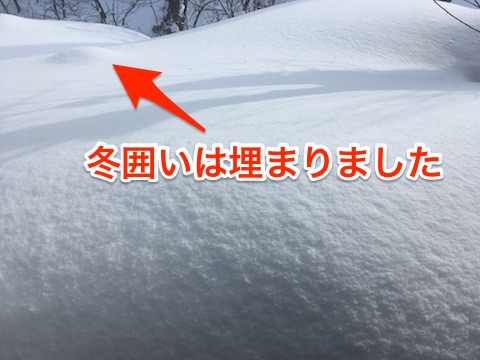 Blog20180219_13_47_43moji