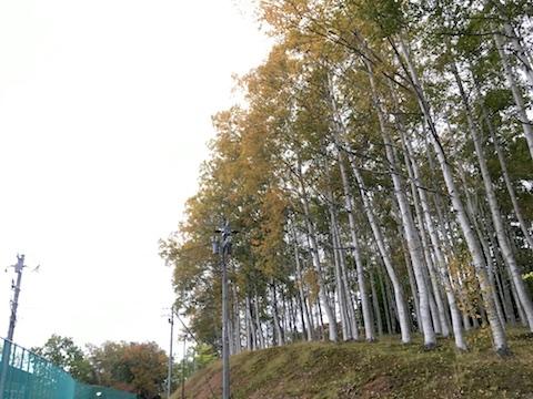 Otaru_20181010_163509